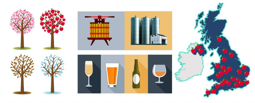 Cider Diversity