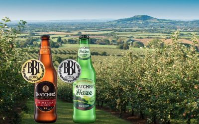 Two medals for Thatchers at the 2016 BBI Awards