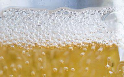 September Cider Digest