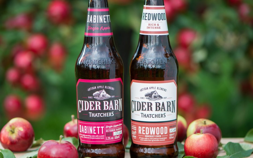 INTRODUCING DABINETT AND REDWOOD INTO THATCHERS CIDER BARN