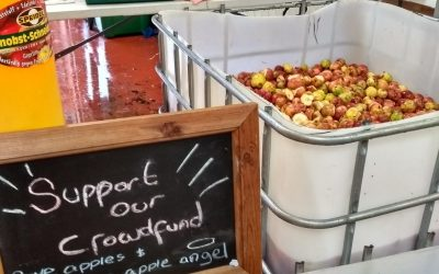 Turning London's fruit waste into community-made beverages