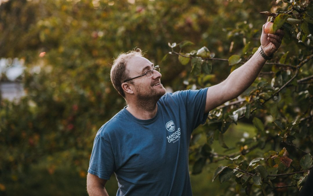 SANDFORD ORCHARDS PARTNERS WITH BRISTOL UNIVERSITY TO PRESERVE ANCIENT APPLE VARIETIES